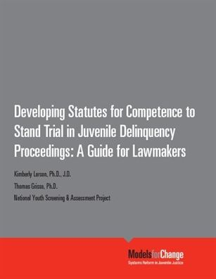 Developing Statutes